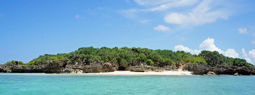 沖縄にダイビングをしに行くならおすすめのダイビングショップ情報